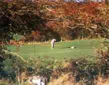 Ireland Golf Tour - Gort Golf Club